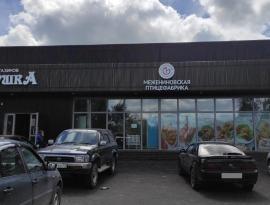 Производство наружных рекламных вывесок, логотип - лайтбокс, монтаж в селе Богашёво